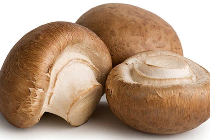 Kastanje champignons per kist  a. 3 kilo